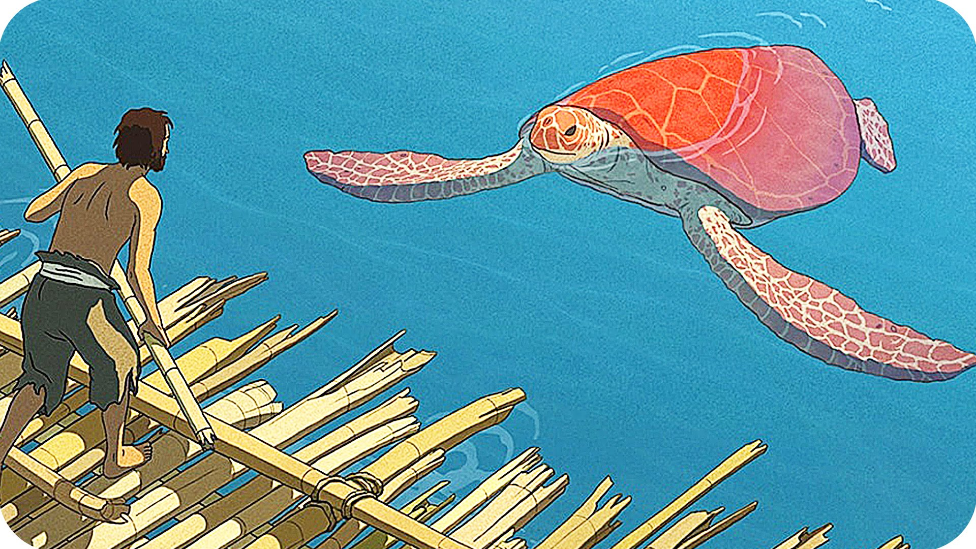The Red Turtle Upstate Films Ltd