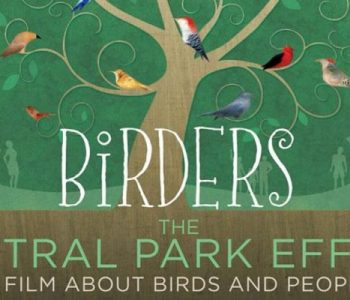 The Central Park Effect, A Film About Birds and People